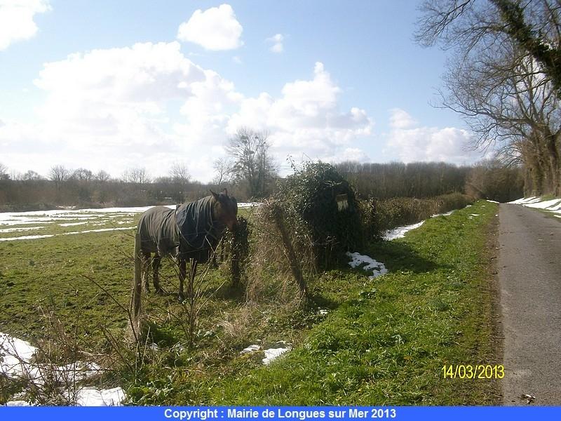 63-la-neige-fond-et-les-chevaux-ont-garde-leur-couverture