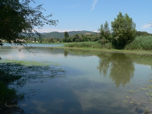 le Rhône à Printegarde